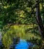 camping baignade riviere tarn