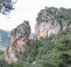 roche jonte